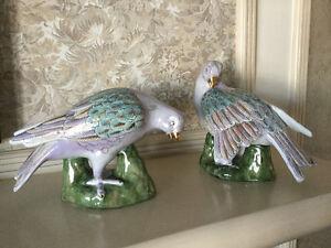 Toyo China Lovebirds