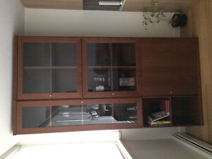 2 piece cabinet/wall unit