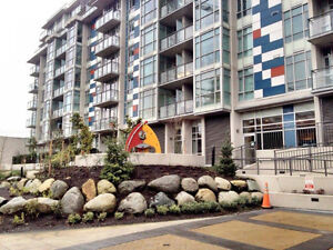 Furnished Condo in The Pinnacle Building in False Creek #575