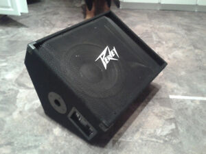 Peavey PV12M passive stage monitor