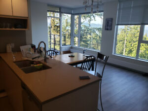 Looking for a roommate, SFU Burnaby Campus residential area