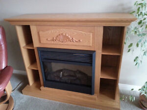 Dimplex Electric Oak Bookcase Fireplace $375 - Salmon Arm