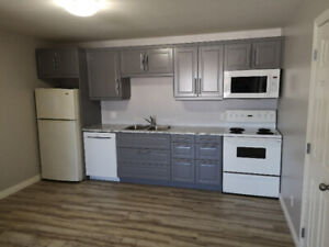 Renovated 2  Bedroom Apartment available in Newcastle