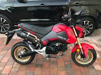 Honda MSX 125 Grom Excellent Condition Very Low Miles Mature Owner MSX125 125cc