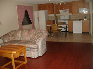 Furnished 2 bedroom Walk Out Basement for rent in Patterson Hill