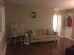 1 bedroom apartment for rent available April 1st