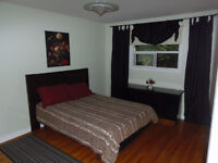 Scarborough – Rooms in House – For Working Pro or Students