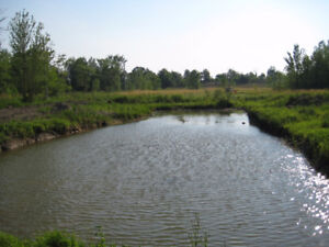 Organic Farm land with a private lake, ponds and house !