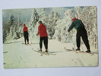 Vintage POSTCARD: Cross Country Skiing, East Coast ** See STORE for More Items +
