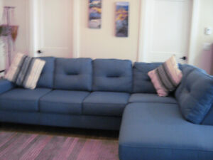 Beautiful Blue Sectional couch