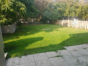 Dog friendly all inclusive 2 bedroom apartment