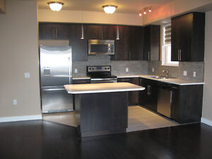 Two Bedroom/two bathroom new downtown Condo