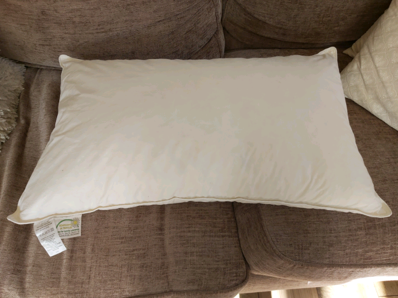 Duck feather and down pillow unused £30