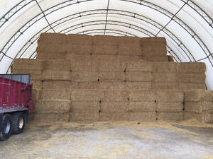 Big Straw Bales For Sale