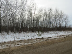 80 ACRES EAST SELKIRK AREA