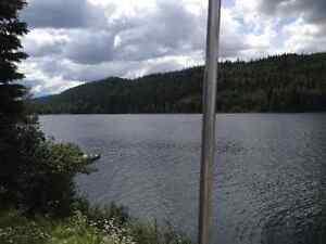 Quesnel Lake Waterfront Cottage Williams Lake Cariboo Area image 9