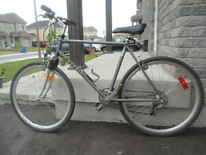 Raleigh Cross Lite
