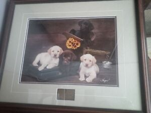 Ducks Unlimited Tons of Fun framed print