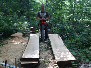 Ultralight Portable Bandsaw Sawmill & Portable Chainsaw Mill