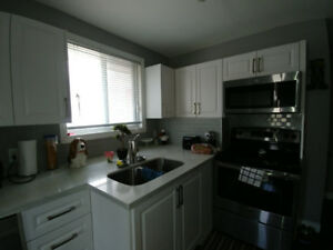 This is It! Renovated 3 Bedroom Main In Newmarket - March 1