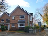 Flat to rent, Cimla, Neath. 2 bedrooms, kitchen, lounge/diner, bathroom with shower, parking space.
