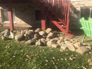 Decorative rocks for gardening.