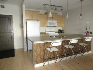 Fully Furnished  2 Bedroom 2 Bath Condo At the Summits