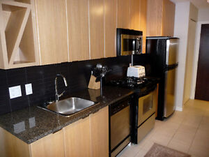 Fully Furnished 1 Bedroom and Large Den Apartment in Yaletown-No