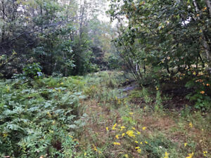 204' acres of Wooded Land, Seguin Township