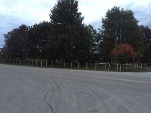 LEEP Posthole, Fence and Deck Sarnia Sarnia Area image 3