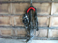 Single Leather Driving Harness
