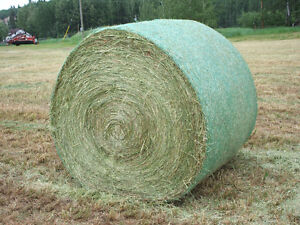 5X5 Net Wrapped 2016 Alfalfa/Timothy Hay for Sale Prince George British Columbia image 1