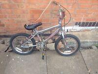 Piranha bike