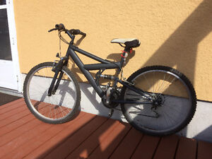 Teen/Adult mountain bike