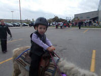 PONY RIDES AND PONY PARTIES FOR ALL OCCASIONS-VERY REASONABLE