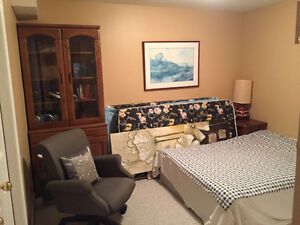 specious one bedroom in walk-out basement for rent Kitchener / Waterloo Kitchener Area image 6