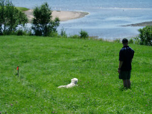 Scenic Waterfront Property - Bayview (Pictou, NS)