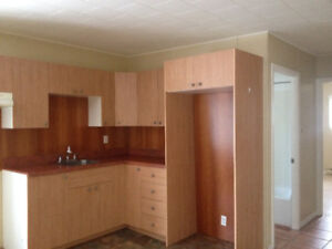 2 bedroom apartment for rent in Grand-Falls.N.B.bonus room