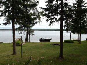 PERCH LAKE CAMP FOR SALE
