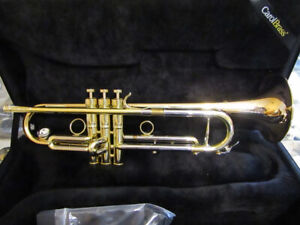 9 Professional Horns For Sale