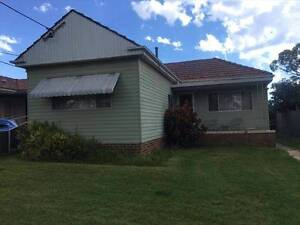 For Rent | House | 3 Arlewis St, Chester Hill NSW 2162 | $500 P\W Chester Hill Bankstown Area Preview