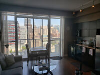 126 Simcoe street , room for rent -female young professional