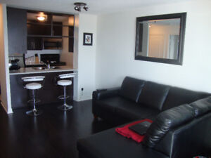 FULLY FURNISHED 1 bedroom plus den condo Available NOW