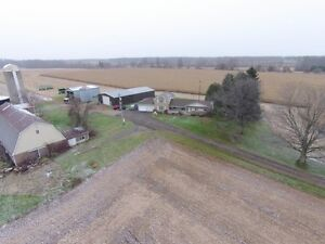 200 Acre Farm - 5 Bdrm House, Barn & Out-buildings London Ontario image 3