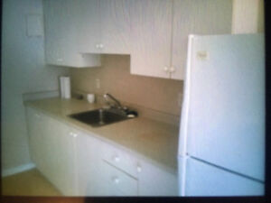 Renovated First Floor Apartment in Excellent Area London Ontario image 2