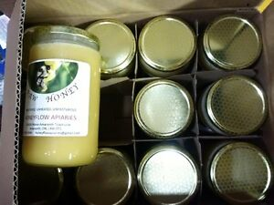 Raw Honey Unfiltered, Unheated, Unpasturized Local Ontario $20ea