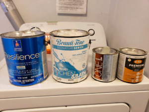 Household Paint