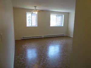 2 Bedroom Apt.-SPACIOUS & INCLUSIVE!