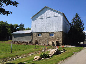 Barn and pasture for rent