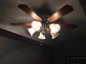 Beautiful Ceiling Fan